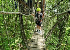 ecotarium-canopy-bridge
